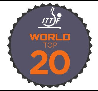 world top 20 logo2