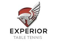 Experior Table Tennis Club, Addison, IL