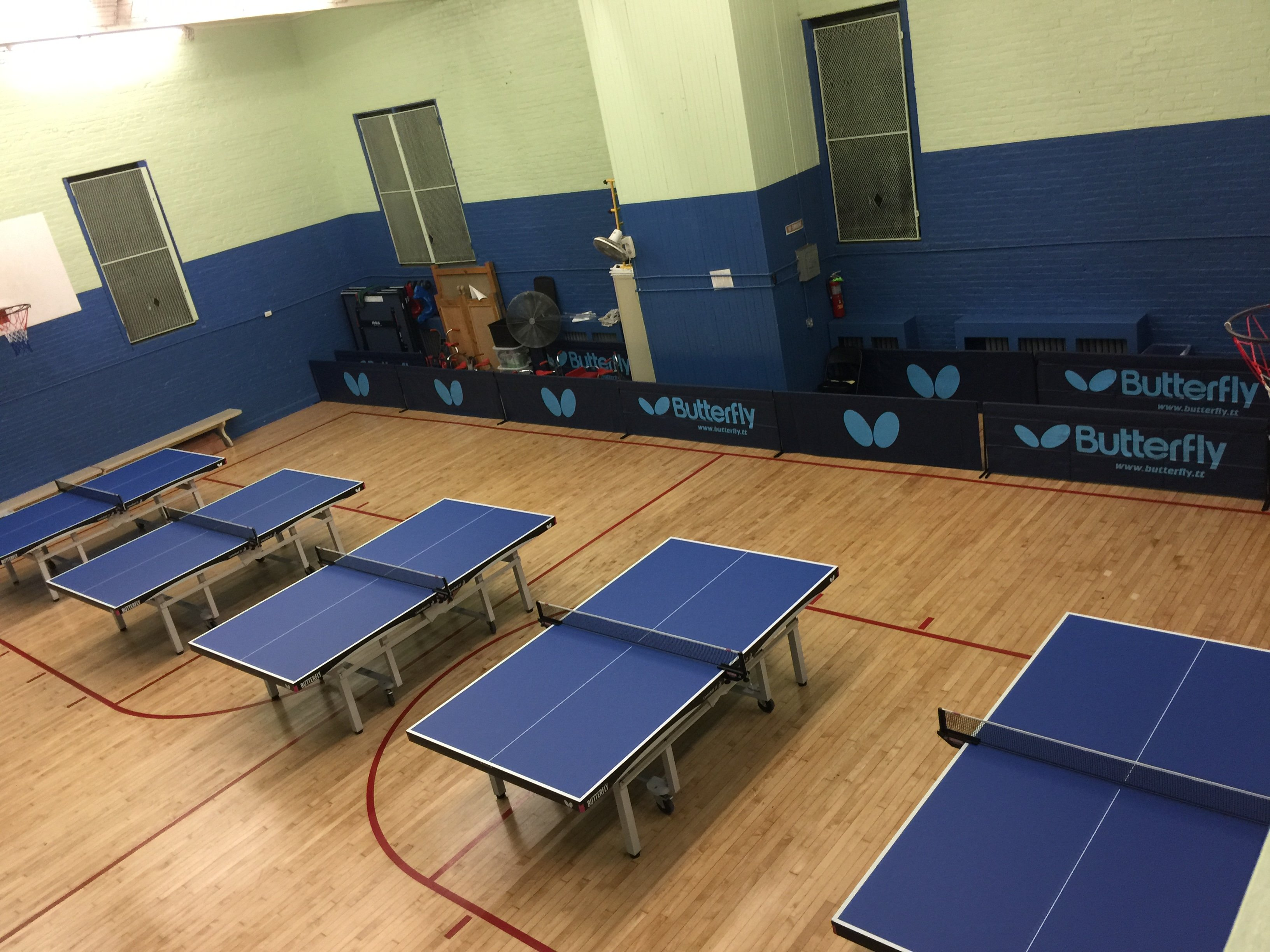 New York City Table Tennis Academy News Butterfly Online