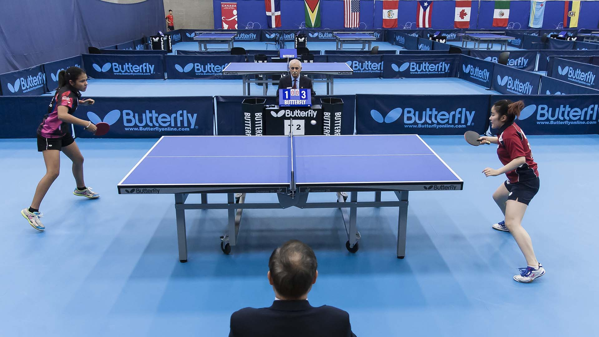 Invitation To Umpire In Argentina Butterfly Online