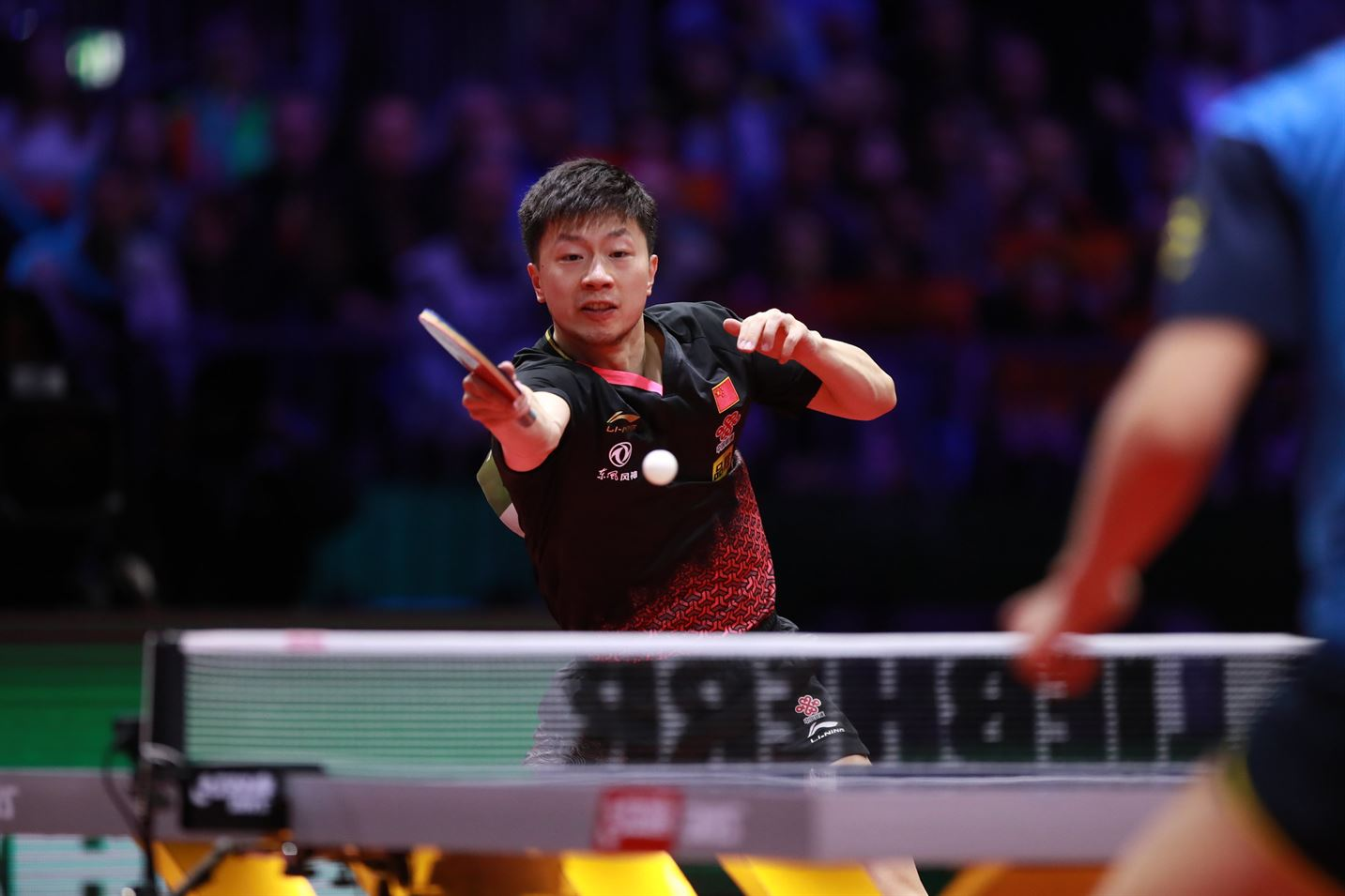 2019 World Championships Review