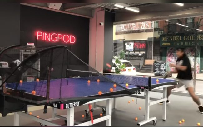 Butterfly Buzz: A Tour of the PingPod Facility